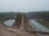 惠民区李庄镇33000方土地出售