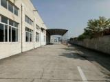 松江区新桥申徐路30000方厂房出租