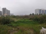 港口区中心区赤岗街3780方土地出售