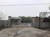 江山区金坞村委800方厂房出租
