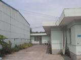 嘉定区朱戴路2000方厂房出租