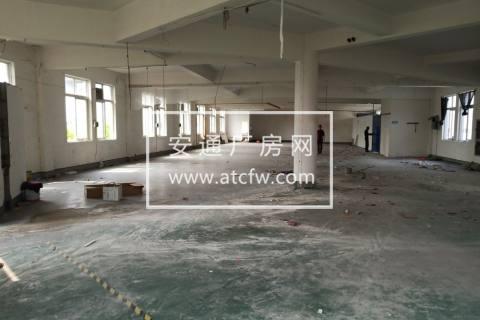 蛟川俞范三楼850方厂房出租