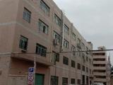 龙岗区南联第六工业区宝南路650方厂房出租