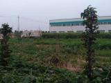 郑州周边郑州桃花峪桥北20000方厂房出租