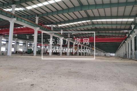 绍兴上虞杭州湾工业区50000方全底层厂房出租(可分租)