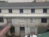 瓯海金达路1000方厂房出租