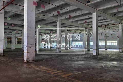 104板块 金桥核心地段 层高9米 场地太大 证件齐全