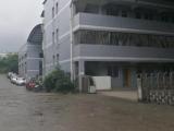 九龙坡陶家工业园2000方厂房出租