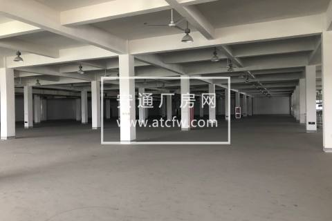出租杭州湾100000方厂房