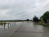 青浦区外青松公路10000方土地出租