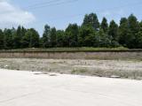 桐乡崇福工业区20000方厂房出售