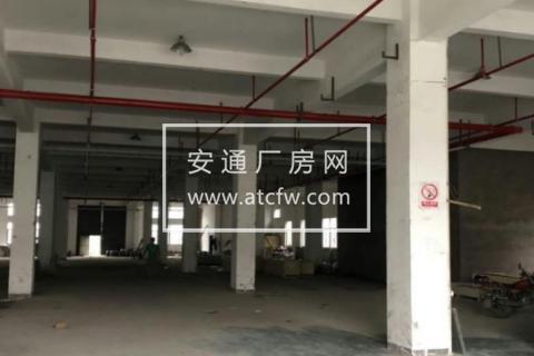 H滨海42000方厂房整体出租(可分割,带喷淋)