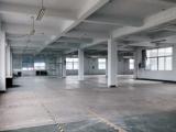 黄岩拱新大道1200方厂房出租