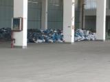 三门三角塘工业区1200方厂房出租