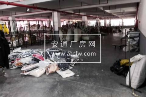 许村5000方服装生产厂房对外招租