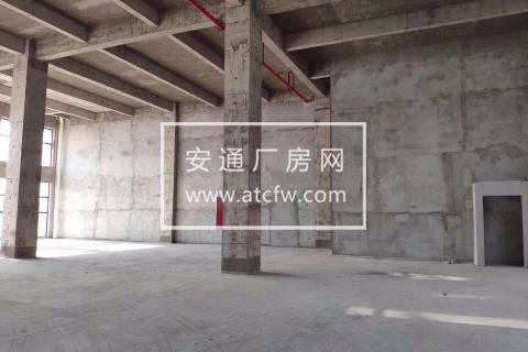 首层8.1米挑高 全新标准厂房 50年独立产权