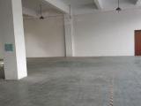 松江区洞泾洞业路111号B栋一楼506方厂房出租