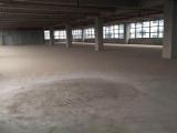 南岸茶园玉马路18号东本·企业上谷A9栋工业园5500方厂房出租