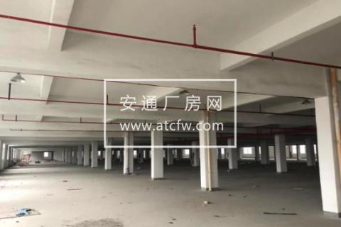 浙江绍兴滨海42000方带喷淋厂房仓库出租