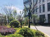 苏州优质厂房出租,开发商直招,政府支持项目