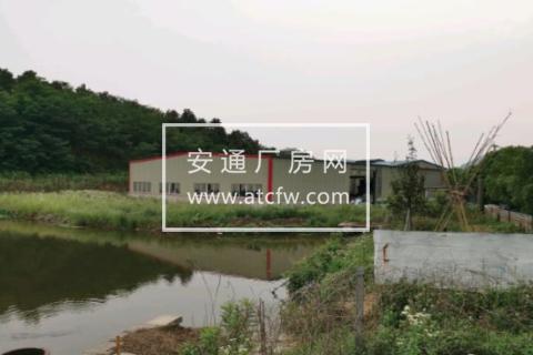 丹阳丹北埤城镇西巨村通港路南1300方厂房出租