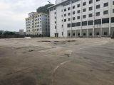 新塘13000方厂房出租