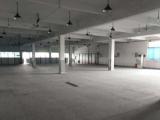 嘉善县惠民街道丽正路51号8600方厂房出租