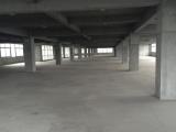 西湖区新辰云谷5000方厂房出租
