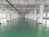 金山区朱泾工业园6000方厂房出租