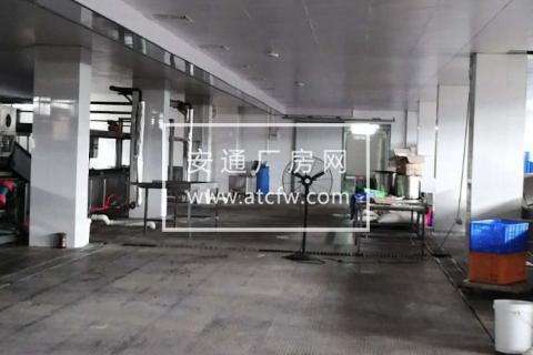 濠江区广澳狮岭加工区以北地块(1)5200方厂房出租