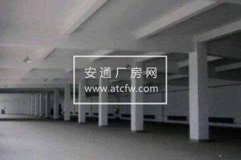 津南区上海街1800方仓库出租