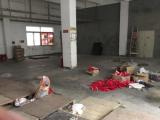 南山区九祥岭工业区600方仓库出租