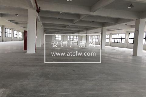 滨海工业园区15000平方米标准工业混凝土厂房出租