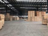 新塘工业园区底层10000平方厂房出租
