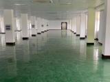温岭松门淋川工业区730方厂房出租