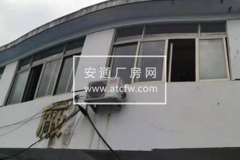 椒江阿富米业720方厂房出租