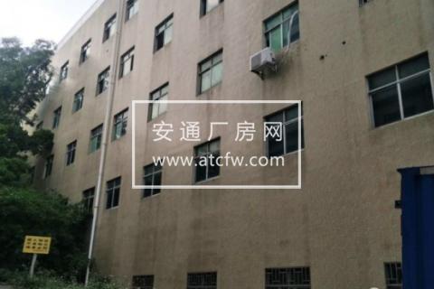 龙华新区龙丰工业区32栋550方仓库出租