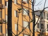 谯城区康美中药城路东650方厂房出租