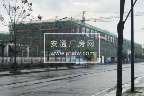 松江区江南镇政府旁1600方厂房出售