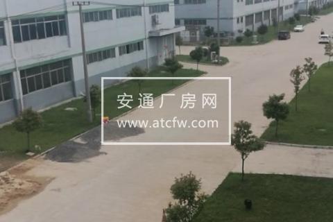 泗阳区徐淮路边,青岛啤酒厂斜对面2288方仓库出租
