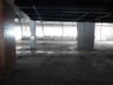 浦东区沪南公路申江南路1600平独门独院厂房出租1600方厂房出租