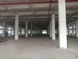 开发区苏通大桥附近19000方厂房出租