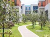 肥西独栋框架厂房出售600到6000平米独栋