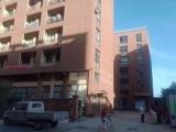 诸暨安华镇现代包装园区2000方厂房出租