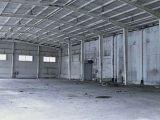 上海南汇工业园20000单层厂房,可以分租