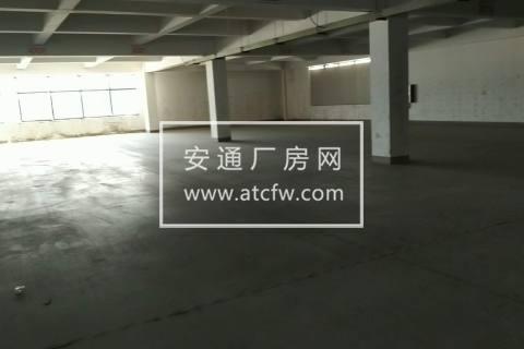 华谊路高浪路口仓库招租