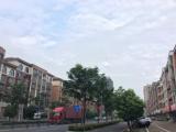 义乌周边上溪工业区金塘路1000方厂房出租