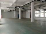 雨山西路1369号雨山开发区管委会对面(奥迪4S店旁边)800方厂房出租