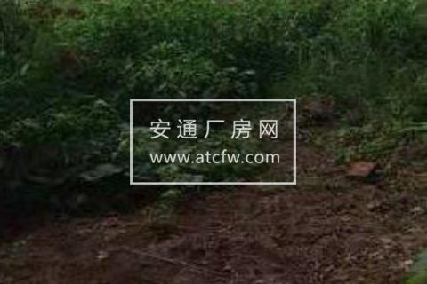 津南区公安县藕池工业园700方土地出租