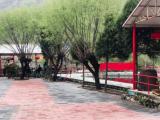 怀柔区虹鳟鱼一条沟4000方土地出租
